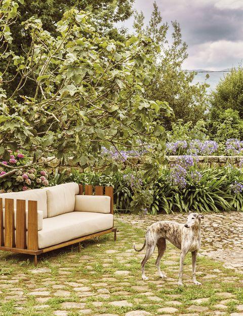 <p>En el jardín, Gala, la mascota de la familia, posa vigilante junto a un sofá de exterior de la colección Fence, realizado en madera de iroco por Nikolas Piper. </p>