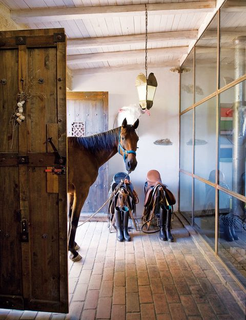 <p>El caballo Mariscal Ney se asoma a la entrada, con una lámpara de artesanía portuguesa. En la pared, toro blanco de Javier Requejo jr.</p>