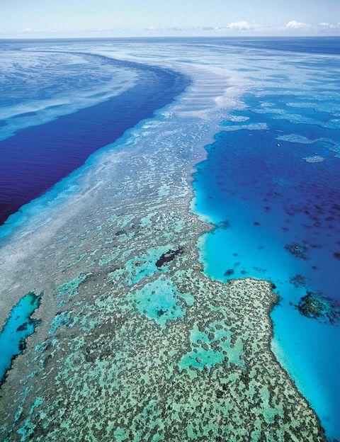 <p>Los que prefieran las maravillas que oculta el mar tienen en la Gran Barrera de Coral su mejor destino. Se trata del mayor arrecife de coral del mundo y está situado en el Mar del Coral, frente a la costa de Queensland al noreste de Australia. Con unos 2600 kilómetros de longitud, se puede ver incluso desde el espacio. Muchas ciudades de la costa de Queensland, por ejemplo Cairns y Townsville, ofertan viajes a diario en barco para disfrutar de estas aguas claras con una gran diversidad biológica.</p>