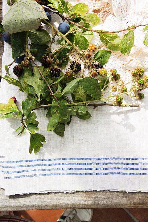 """<p>El enoturismo es un valor en alza. Nuestro país está considerado la tercera potencia más fuerte en relación al turismo vitivinícola. Cada vez brotan más bodegas en nuestra tierra y las actividades que giran alrededor, se multiplican. Visitas guiadas, catas, cursos de aromas... Pero ahora hay algo más: ensuciarte las manos directamente en el campo, y entrar a vendimiar.</p><p>Las <a href=""""http://www.comenge.com/es/"""" target=""""_blank"""">Bodegas Comenge,</a> donde se vendimia a mano, ofrecen la posibilidad de que sus visitantes &quot;ayuden&quot; en las labores del campo. Puedes completar la experiencia bajo el sol con una comida de lo más campestre, con platos típicos como guiso de patatas con costillas o bacalao a la vizcaína con tomate de su huerto. Y cómo no, los vinos de la casa. <strong>Y psss...</strong> ¡También puedes pasear entre viñedos en un coche de caballos!</p><p><strong>En Curiel del Duero (Valladolid).</strong></p>"""