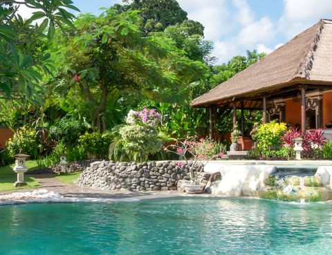 Plant, Water, Real estate, Garden, House, Shrub, Resort, Home, Roof, Water feature,