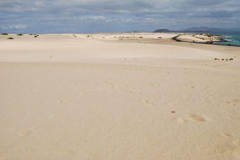 Sand, Natural environment, Aeolian landform, Beach, Sky, Singing sand, Dune, Sea, Ecoregion, Desert,