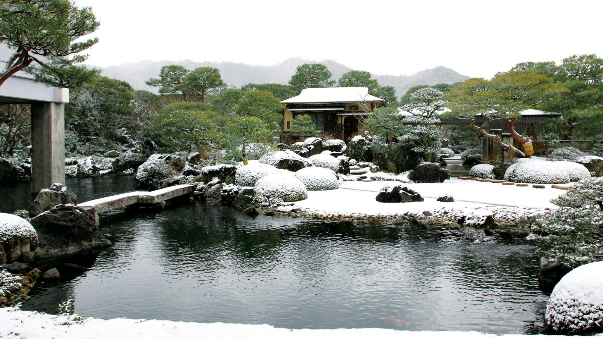 oasis de invierno