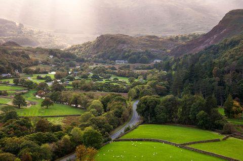 Nature, Vegetation, Plant, Natural landscape, Mountainous landforms, Landscape, Highland, Valley, Garden, Mountain range,