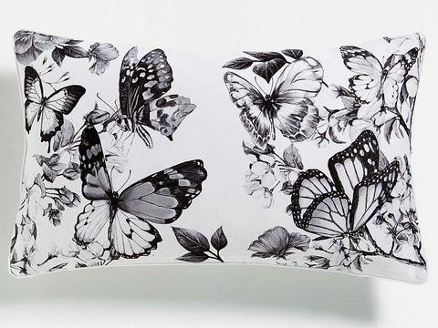 motivos de mariposas
