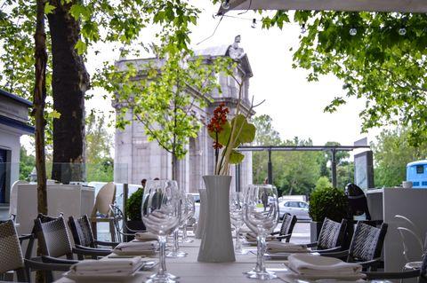 Photograph, Centrepiece, Branch, Tree, Table, Restaurant, Ceremony, Wedding reception, Plant, Rehearsal dinner,
