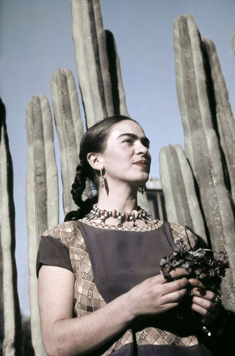 Photograph, Saguaro, Cactus, Fashion, Hand, Plant, Photography, Flower, Glove, Fashion accessory,