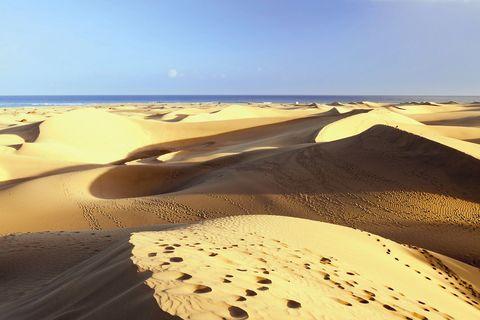 Sand, Brown, Yellow, Natural environment, Erg, Aeolian landform, Landscape, Dune, Horizon, Desert,