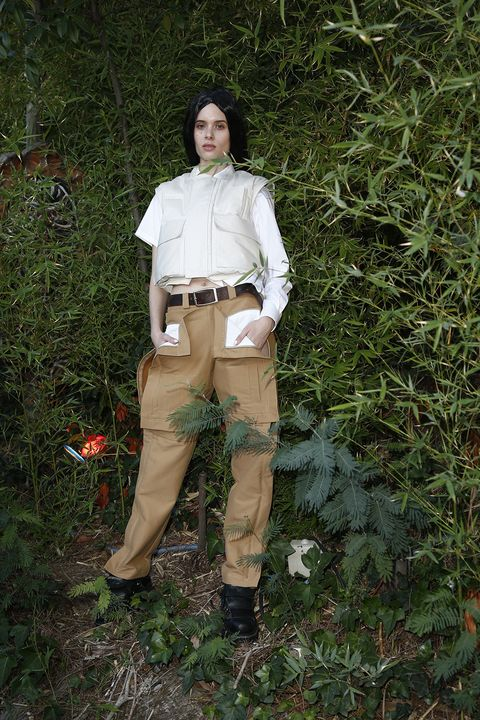 Outerwear, Footwear, Leg, Grass, Photography, Plant, Fawn, Costume, Trousers,