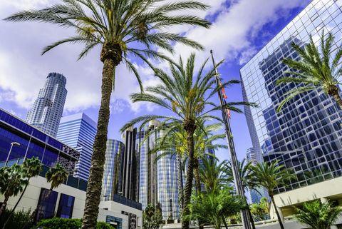 Metropolitan area, Tree, Urban area, City, Skyscraper, Palm tree, Daytime, Architecture, Building, Mixed-use,
