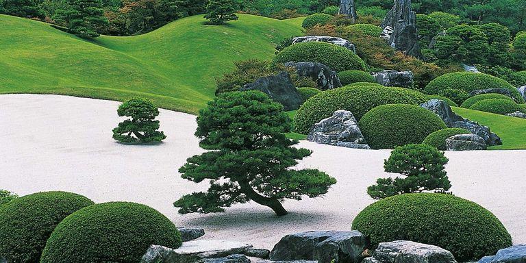 La belleza de los jardines japoneses