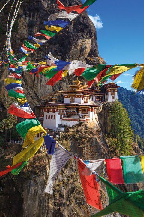 Mountain, Tree, Art, Geological phenomenon, Stock photography, Plant, Mountain range, Tourism, World, Tourist attraction,