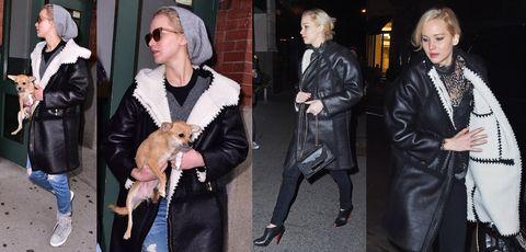 Clothing, Dog breed, Jacket, Textile, Carnivore, Outerwear, Coat, Dog, Street fashion, Sunglasses,