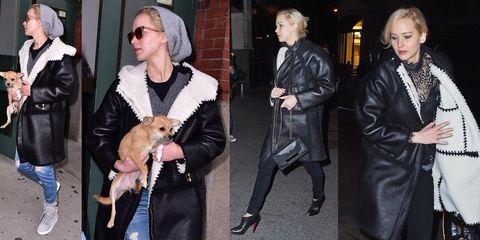 Clothing, Human, Dog breed, Jacket, Textile, Outerwear, Carnivore, Dog, Coat, Street fashion,
