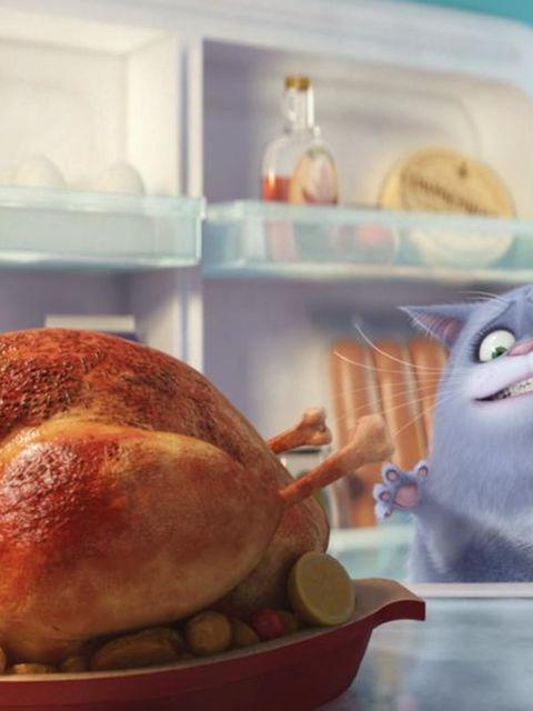 Food, Ingredient, Dish, Turkey meat, Major appliance, Recipe, Cooking, Cuisine, Freezer, Tooth,