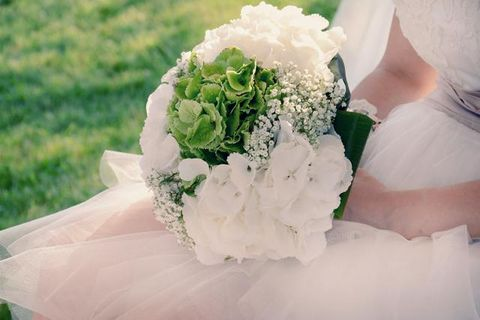 Green, Petal, Photograph, White, Flower, Cut flowers, Bouquet, Wedding ceremony supply, Flowering plant, Ivory,