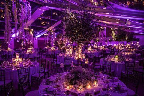 Tablecloth, Decoration, Event, Purple, Function hall, Violet, Lavender, Furniture, Centrepiece, Party,