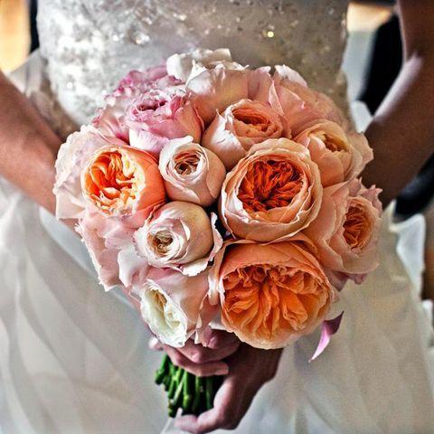 Petal, Bouquet, Flower, Peach, Cut flowers, Floristry, Pink, Orange, Garden roses, Rose family,