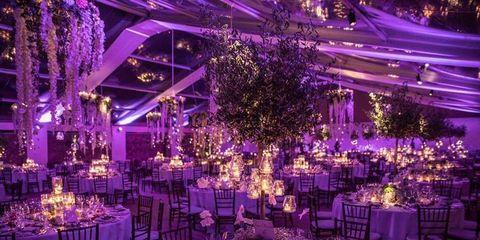 Decoration, Event, Purple, Function hall, Tablecloth, Violet, Lavender, Furniture, Centrepiece, Hall,
