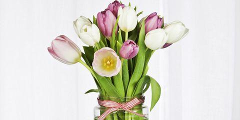 Petal, Flower, Pink, Bouquet, Cut flowers, Artifact, Flowering plant, Botany, Flower Arranging, Floristry,