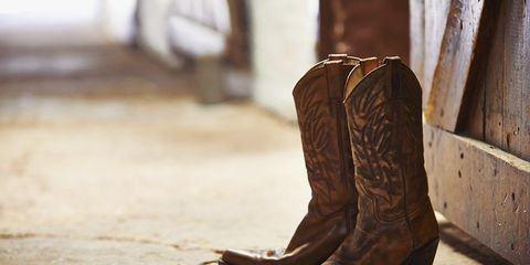Brown, Shoe, Boot, Tan, Leather, Liver, Beige, Riding boot, Tints and shades, Still life photography,