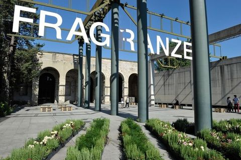 Plant, Architecture, Signage, Arch, Groundcover, Iron, Sign, Walkway, Landscaping, Perennial plant,