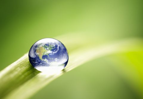 Liquid, Colorfulness, Green, Fluid, Drop, Macro photography, Electric blue, Photography, Close-up, Sphere,
