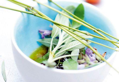 Food, Leaf, Dishware, Liquid, Fluid, Serveware, Ingredient, Lavender, Kitchen utensil, Bowl,
