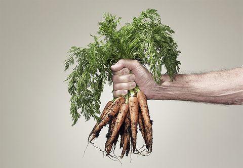 Ingredient, Root vegetable, Produce, Natural foods, Vegetable, Whole food, Herb, Flowering plant, Carrot, Plant stem,