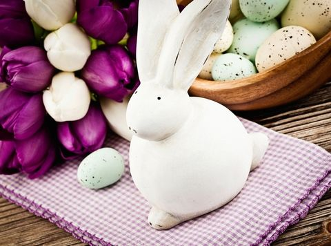 Rabbit, Purple, Rabbits and Hares, Violet, Ingredient, Toy, Produce, Domestic rabbit, Lavender, Home accessories,