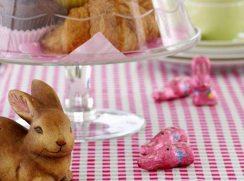 Brown, Serveware, Dishware, Rabbit, Tableware, Rabbits and Hares, Domestic rabbit, Plate, Kitchen utensil, Fawn,