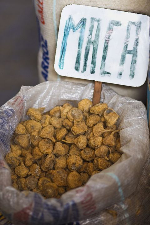 Ingredient, Natural material, Handwriting, Delicacy, Conifer, Cup, Produce, Edible mushroom, Staple food,