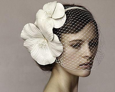 Hairstyle, Photograph, White, Bridal accessory, Petal, Style, Headgear, Eyelash, Beauty, Headpiece,
