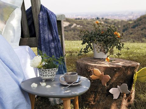 Serveware, Dishware, Table, Porcelain, Cup, Coffee cup, Blue and white porcelain, Outdoor table, Teacup, Ceramic,