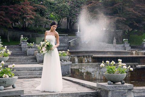 Clothing, Plant, Petal, Trousers, Human body, Dress, Shoulder, Flowerpot, Bridal clothing, Photograph,