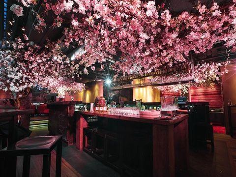 Lighting, Branch, Interior design, Pink, Room, Table, Magenta, Petal, Decoration, Light fixture,
