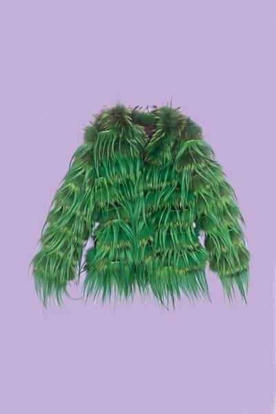Leaf, Fur, Natural material,