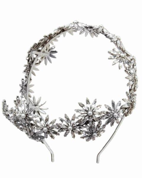 Botany, Art, Natural material, Silver, Still life photography,