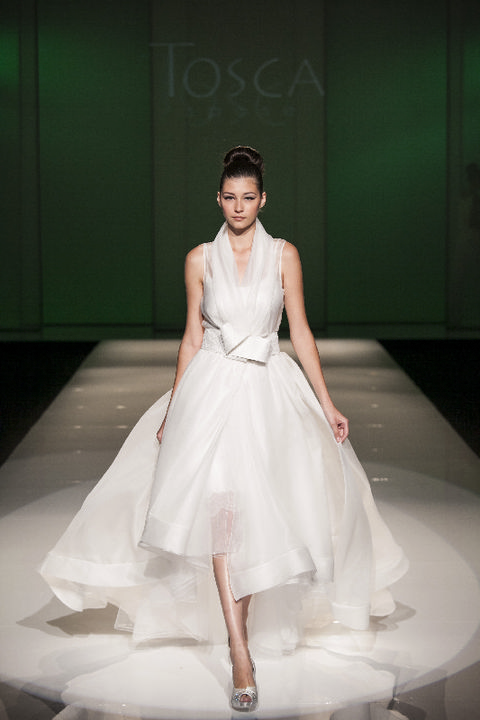Hairstyle, Shoulder, Dress, Textile, Joint, Bridal clothing, Style, Formal wear, Gown, Fashion model,