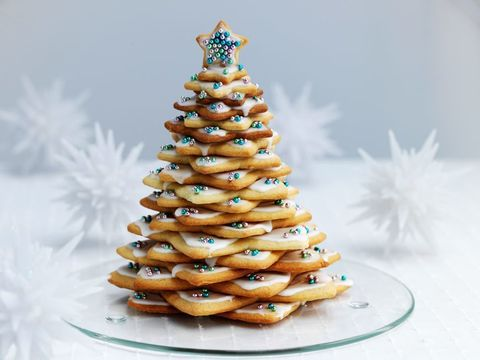 Conifer, Still life photography, Snack, Pine family, Christmas tree, Fir, Pine,