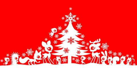 10 Frasi Di Natale.10 Frasi Di Natale Divertenti Per Auguri Simpatici