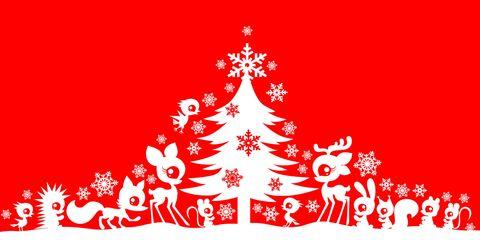 Biglietti Di Natale Divertenti.10 Frasi Di Natale Divertenti Per Auguri Simpatici