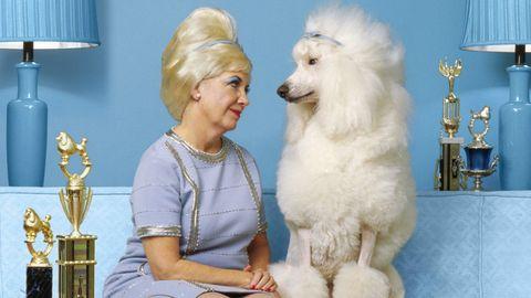 I cani che ci somigliano