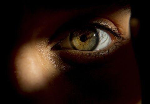 Face, Eye, Eyebrow, Iris, Eyelash, Close-up, Skin, Organ, Nose, Head,