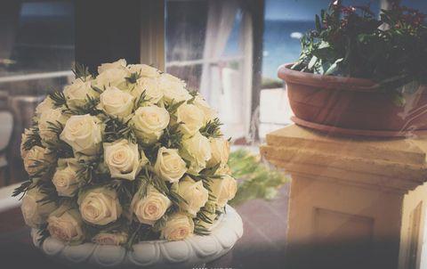 Flower, White, Bouquet, Floristry, Garden roses, Rose, Flower Arranging, Floral design, Cut flowers, Plant,