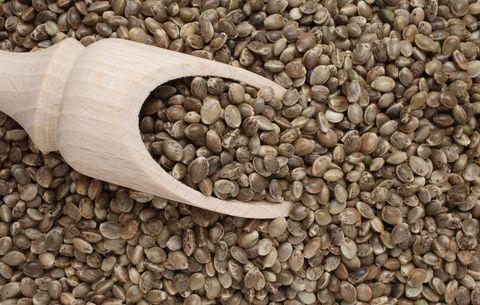 I semi di canapa sono il superfood delle meraviglie, pieni di proprietà, ma occhio alle controindicazioni