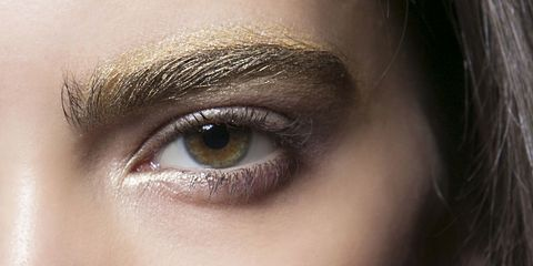 Gold Eyebrows