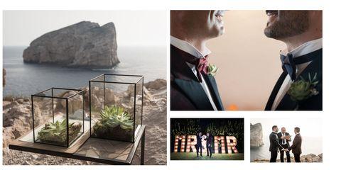 Photograph, Photography, Adaptation, Plant, Collage, Fashion accessory, Photomontage,