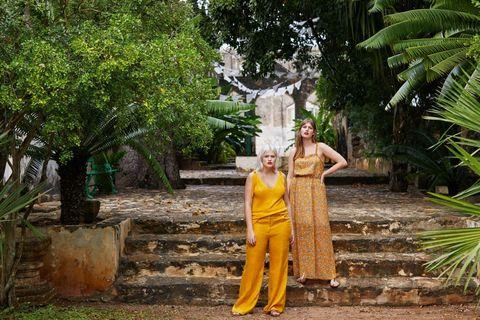 Yellow, Tree, Temple, Dress, Plant, Leisure, Wat, Monk,