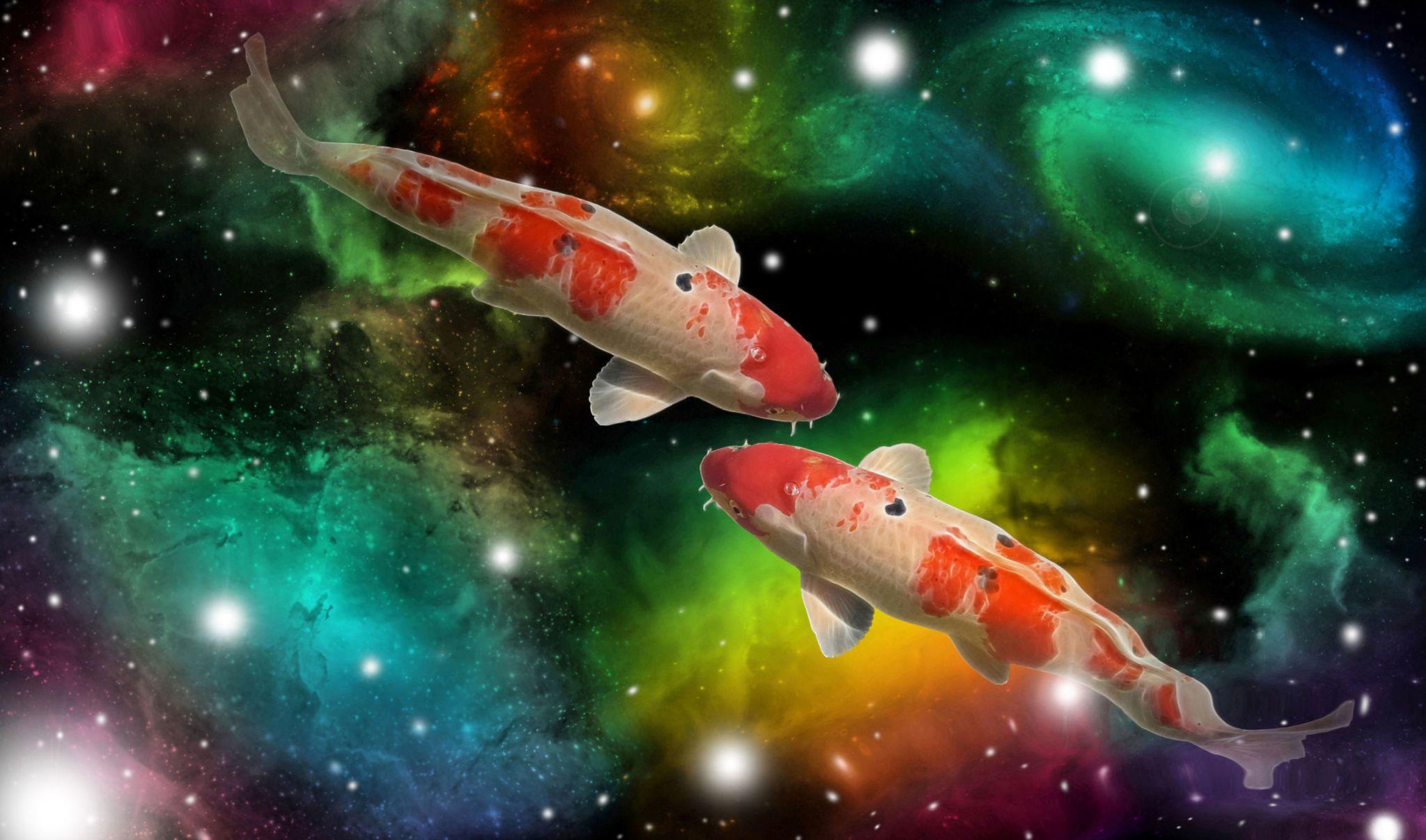 cancro uomo dating donna pesci